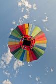 "Hot air balloon above Ann Morrison Park in the ""Spirit of Boise Balloon Classic"" in September 2016"