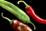 Green and red Anaheim chili peppers (Capsicum annuum)
