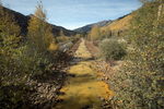 Acid mine drainage in Red Mountain Creek in SW Colorado