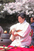 The Japanese tea ceremony is performed under cherry blossom trees to celebrate spring in Golden Gate Park.
