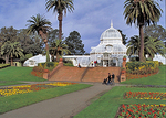 The Conservatory of Flowers, a gem of Victorian architecture, in Golden Gate Park.