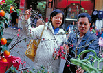 A married couple considers the merits of cuttings from a peach tree, a standard decoration for the house during Chinese New Year.  The peach is an emblem of