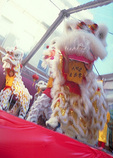 Lion dance performed to whisk away demons, at the show staged in Chinatown,  during the Chinese New Year Festival.