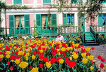 A young couple view the spring tulips outside Monet's house at Giverny.