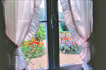 View of Monet's garden from the artist's house at Giverny.