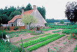 Vegetable plot near Thoury, east of Chambord in the Loire Valley, in spring.