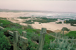 Fog softens the wide expanse of Point Pinos Beach - famous for its tidepools - outside the town of Pacific Grove, in the Monterey Peninsula.
