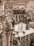 View of the Seine and the rooftops of Paris from the tower of Notre Dame Cathedral.