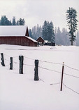 Red barn outside Quincy, CA., after a snow storm, in High-Sierra country.
