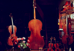 Viola and violins in a music shop.