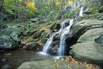 Dark Hollow Falls, Shenandoah National Park, Virginia