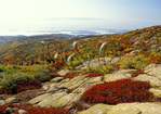 View From Cadillac Mountain, Acadia National Park, Maine