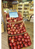 Apples For Sale at Roadside Market, Banner Elk, North Carolina