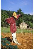 Scarecrow, Humpback Rocks Farmstead, Blue Ridge Parkway, Virginia