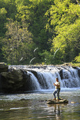 Catching a Fish at Sandstone Falls, New River Gorge National River, West Virginia