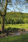 Farm in New River Gorge National River, West Virginia