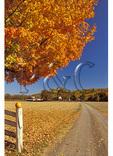 Fall Display, Madison County, Virginia