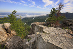 Rising Fog Over Shenandoah Valley, At Chimney Rocks, Riprap Trail, Shenandoah National Park, Virginia