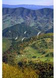 View to East From Spruce Knob, Spruce Knob-Seneca Rocks National Recreation Area, Judy Gap, West Virginia