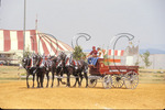 Draft horse show at County Fair, Rockingham County, Shenandoah Valley, Virginia