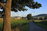 Rural Road in Shenandoah Valley of Virginia