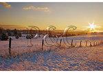 Sunrise, Springhill, Shenandoah Valley, Virginia