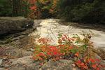 Cascade Brook, Beside Cascades-Basin Trail, Appalachain Trail, Lincoln, New Hampshire