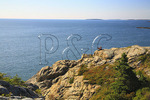 Couple and Dog sit on Great Head, Great Head Trail, Acadia National Park, Maine