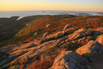 Sunrise, Cadillac Mountain, Acadia National Park, Maine