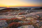 Couple Watching Sunrise, Cadillac Mountain, Acadia National Park, Maine