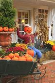 Autumn display, Woodstock, Vermont