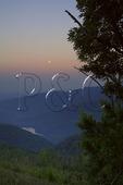 Full Moon, Moormons River Overlook , Shenandoah National Park, Virginia