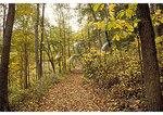 Wilderness Road in Virginia, Cumberland Gap National Historical Park, Middlesboro, Kentucky