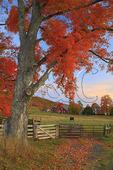 Dawn, Western Highland County, Virginia