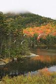 Beaver Pond, Appalachain Trail, Lincoln, New Hampshire