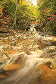 Cascade Brook, Cascades-Basin Trail, Appalachain Trail, Lincoln, New Hampshire