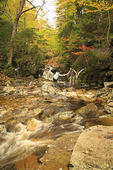 Crossing Cascade Brook, Cascades-Basin Trail, Appalachain Trail, Lincoln, New Hampshire