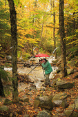 Dry Brook, Falling Waters Trail, Franconia Notch, White Mountains, New Hampshire