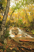 Cascades on Dry Brook, Falling Waters Trail, Franconia Notch, White Mountains, New Hampshire