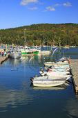 Northeast Harbor, Mount Desert Island, Maine