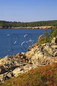 Lobster Boat Near Great Head, Great Head Trail, Acadia National Park, Maine