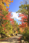 Hikers on Carriage Road near Upper Hadlock Pond, Acadia National Park, Maine