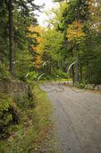 Carriage Road near Jordan Pond, Acadia National Park, Maine