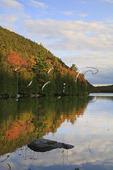Sunset, Bubble Pond, Acadia National Park, Maine