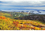 View of Frenchman's Bay From Cadillac Mountain, Acadia National Park, Maine