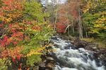 North Branch Moose River, Big Moose, Adirondacks, New York
