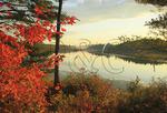 Raquette Lake Inlet, Golden Beach, Adirondacks, New York