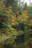 West Branch Ausable River, Lake Placid, Adirondacks, New York