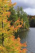 Mason Lake, Parkins Clearing, Adirondacks, New York