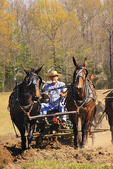 Farmers with horses and mules plow field at Spring Planting Festival, Lora Blevins Homesite, Bandy Creek Area, Big South Fork National River and Recreation Area, Oneida, TN